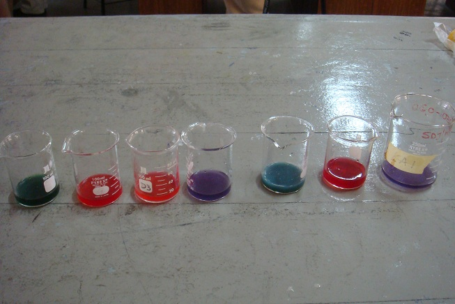 Natural Universal Indicator_Purple cabbage